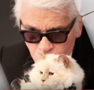 Karl Lagerfeld s svojo Choupette. (Foto: YouTube)