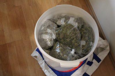 """Vedro """"trave"""", ki ga ne bodo kadili vaši mladostniki (foto: PU Ptuj)"""