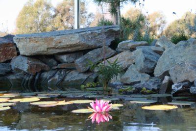 Meditacija (foto: V.V.)