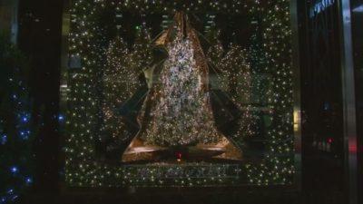 Vsako leto decembra je v New Yorku otvoritev izložb veleblagovnic največji dogodek leta. 5