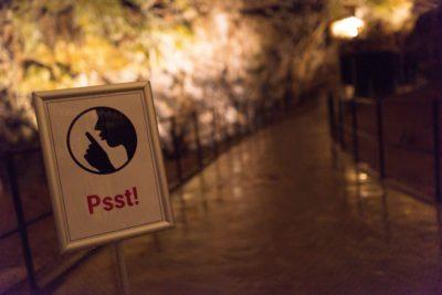 Obiskovalce Postojnske jame prosijo da gredo mimo akvarija čim tišje (foto: Iztok Medja za Postojnsko jamo).