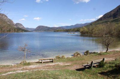 Saškino Bohinjsko jezero (foto: STA)