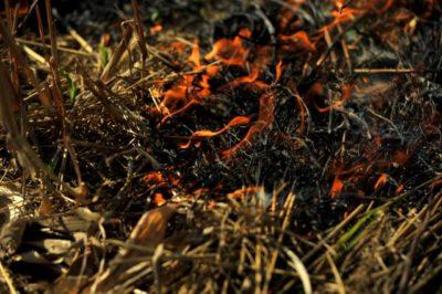 Manjši požar lahko pogasimo z vodo ali ogenj posipamo z zemljo (foto: STA)