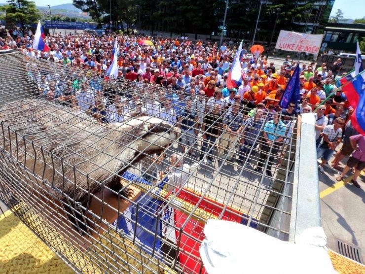 Zaposleni v Luki Koper so svoje nezadovoljstvo pokazali z Jazbecem (Foto: Facebook)