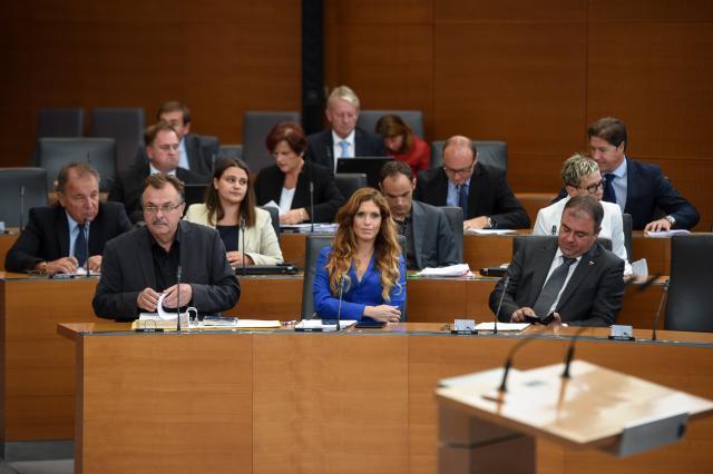 Poslanska skupina SDS (foto: STA)
