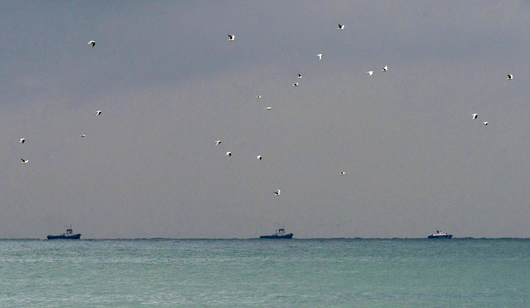 Rusko ladjevje išče preživele in ostanke letala (foto: epa)